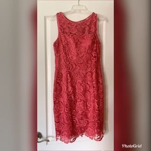 Magenta lace Adrianna Papell knee length dress